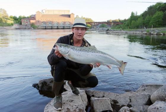 Joel Karjalainen med älvkarleby lax.